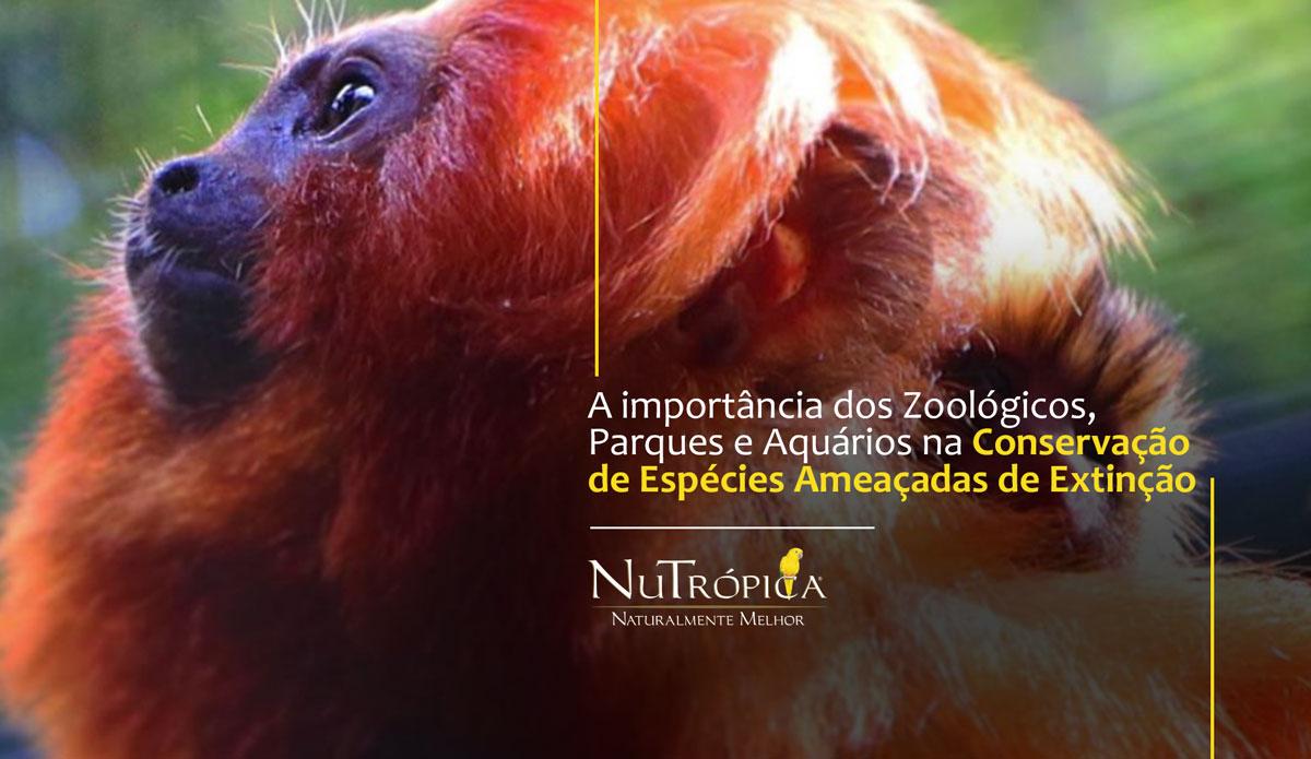 A importância dos Zoológicos, Parques e Aquários na Conservação de Espécies Ameaçadas de Extinção