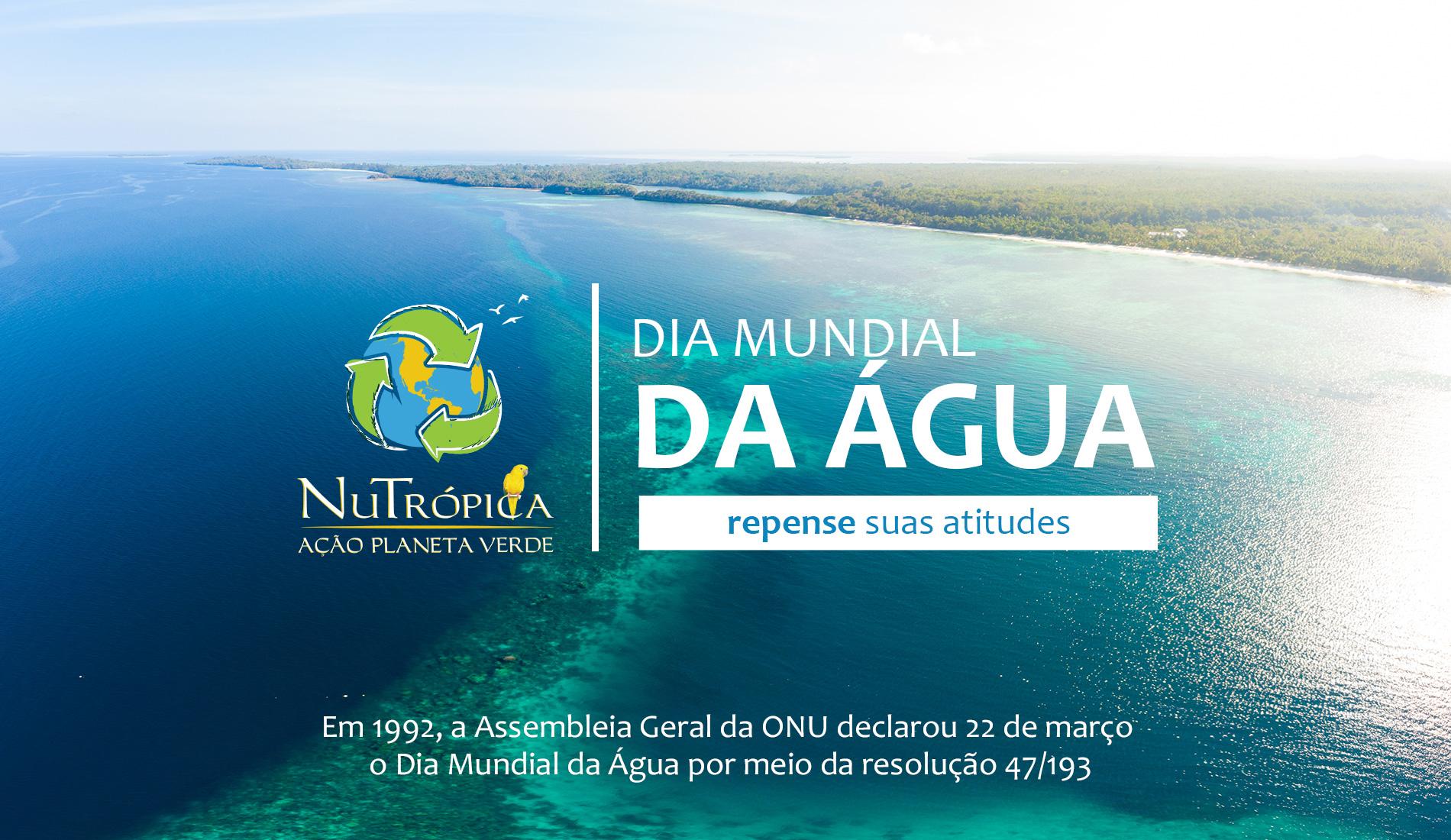 Saiba mais sobre o dia mundial da água (data ONU)