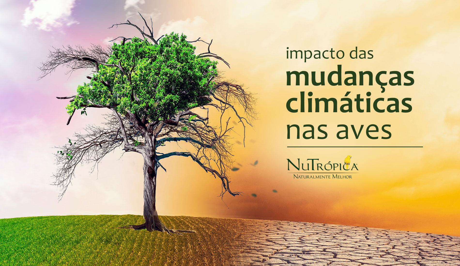 O impacto das mudanças climáticas nas aves